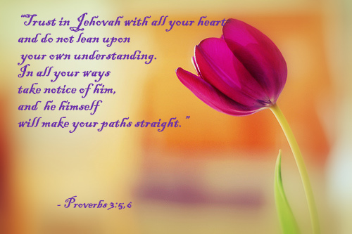 Bible Quotes About Relationships Adorable Bible Verse4Proverbs 356  Quotes Here And There